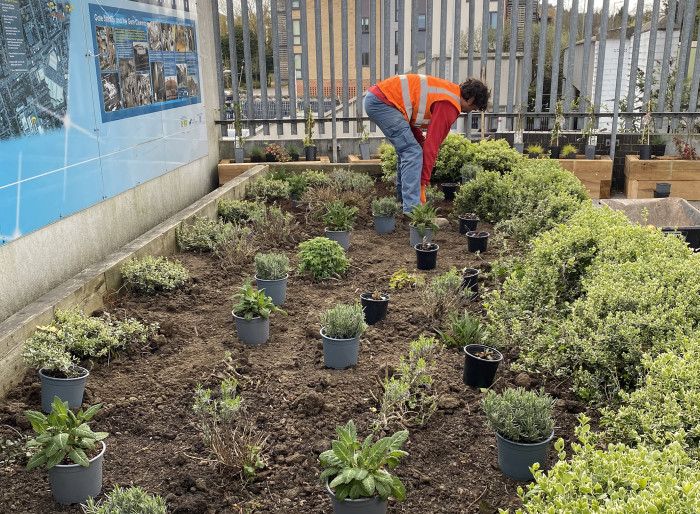 Station partners plant a greener welcome to Elstree & Borehamwood