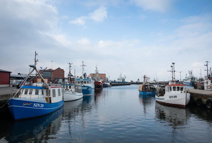 Gemensam strategi för svenskt fiske och vattenbruk