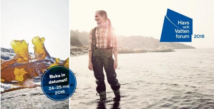 Årets Havs- och vattenforum sätter pengarna i fokus: Satsa på miljön ny lönsam trend?