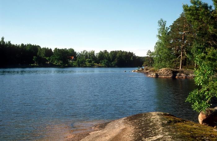 HaV ger 2,3 miljoner till fiskprojekt i sjön Sommen i Östergötland
