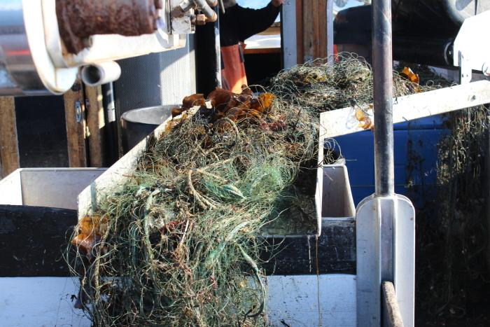 Miljonstöd för renare hav– förlorade fiskeredskap ska samlas in