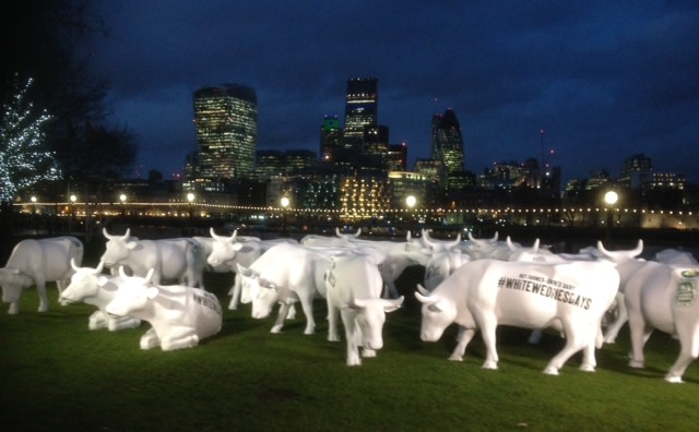 ​Have you herd? –Dairy Cows Hit the Capital