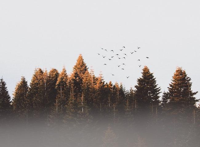 Artikel bild, Ett år sen elprischocken - hur blir hösten?