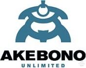 Akebono Unlimited AB