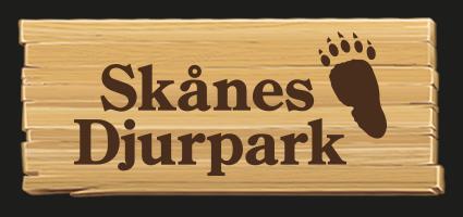 Gå till Skånes Djurparks nyhetsrum