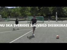Almedalen 2016: Dear Sweden you fucked up