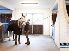 Abetong häststall och ridhus