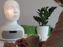 Tengai - the world's first social job interview robot
