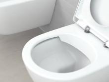 Hygienic Flush
