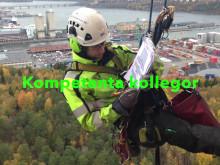 Klätterservice rekryterar i Malmö och Stockholm