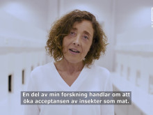 Karin Wendin - insekter som mat