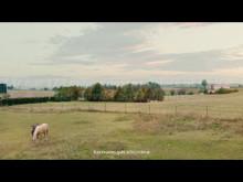 Sjungande hästar - nytt reklamkoncept