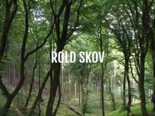 Smutturens videopræsentation af Rold Skov