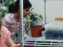 MKB Fastighets AB:s spjutspetsprojekt Greenhouse har blivit film