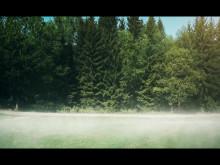 #jagspringerför film