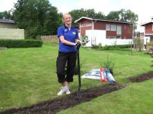 Video - Så här planterar du häckplantor