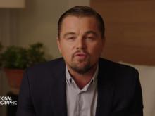 Before The Flood Intro med Leonardo DiCaprio