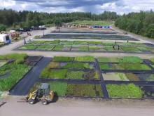 Veg Techs odling i Fagerås