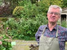 Claus Dalby välkomnar till Sofiero våren 2020
