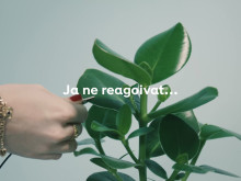 Kasvit osaavat laulaa! Plantagenin elävä kuoro esittää Jouluyö, juhlayö -laulun.