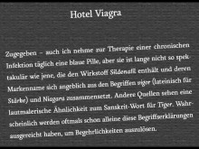 Pax et Bonum »Frischfleisch war ich auch mal« – Interview mit Matthias Gerschwitz auf prideradio.de (28.01.2017)