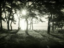 """""""Du gör mig rädd"""" video - Vera Vinter"""