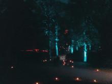 Film från Ljusstämning