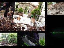 EGO Power+ 56V Batteridriven lövblås demofilm