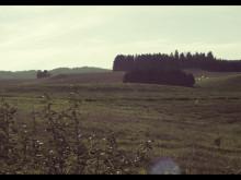 Der Olavsweg nach Trondheim
