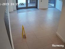 CCTV footage 1 - leaves internal