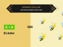 2 Billion Bees in 2020 Project