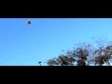 Jason Mraz - I'm yours video