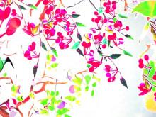 Pollinera mera! En blommande film från Svenska Bin