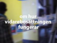 Vad får kvotflyktingar veta om Sverige