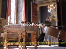 Jakob Koranyi fick Sixten Gemzéus stora musikstipendium 2017