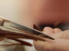 Calligraphy Cut - was ist das?