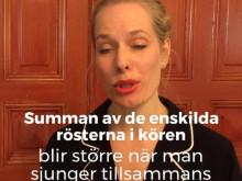 Basar och tenorer till Stefanskyrkans Vokalensemble.