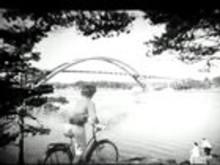 Ingo 1961
