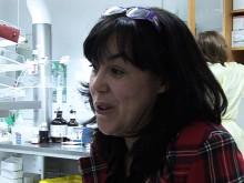 Gisela Barbany-Bustinza: Avancerad analysteknik avgörande vid leukemi