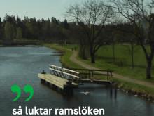 Film från Sveriges vackraste tågresa - Lidköping till Mariestad över Kinnekulle