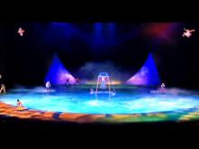 Official Logistics Partner for Cirque de Soleil
