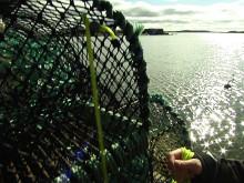 Sjöräddningssällskapet inför hummerfiskepremiären 2015_ny