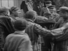 Third Reich: The Fall