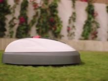 Honda robotgräsklippare Miimo funktioner och fakta