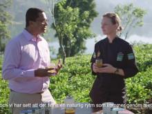 Vad är ekologiskt te? - Titti Qvarnström