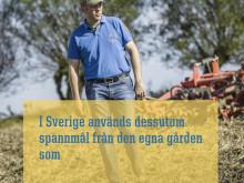 Klimatsmart svensk kyckling