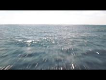 Eurosport 2 - ny kampanjfilm (30 sekunder)