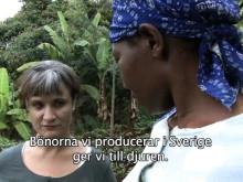 Åsa Slobodniks första dag i Kirwara, Kenya