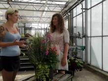 Trädgårdsmästare Neringa tipsar om hur du lyckas med din höstkruka