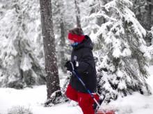 Vinter i Värmland